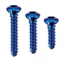 2.0MM TITANIUM CORTEX SCREW, 6