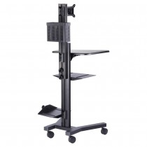 (NEW) WHITTEMORE ENDOSCOPY CART